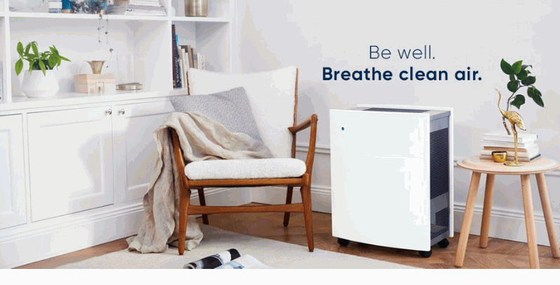 Why You Need an Air Purifier